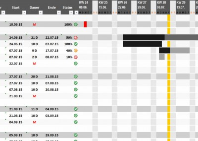 Excel Projektplan grau
